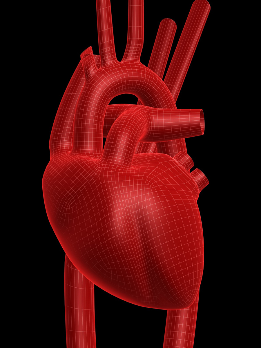 aa heart