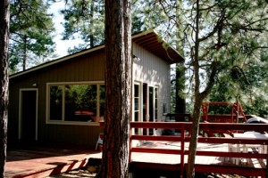 Our Idyllwild hideaway in the woods.